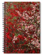 Double Quince Spiral Notebook