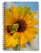Double Rejoice Spiral Notebook