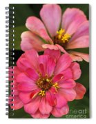 Double Vision In Pink Spiral Notebook