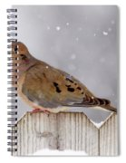 Dove In The Snow Spiral Notebook