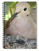 Doves In Planter Spiral Notebook