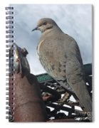 Doves New Pal Spiral Notebook
