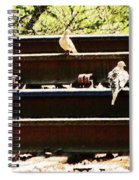 Doves On The Tracks Spiral Notebook
