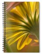 Down Among The Daisys Spiral Notebook