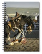 Down And Out Spiral Notebook