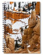 Down Into The Canyon Spiral Notebook