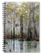 Down On The Bayou - Digital Painting Spiral Notebook