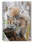 Downright Adorable Spiral Notebook