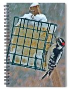 Downy Woodpecker In The Snow Spiral Notebook