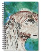 Doxie Blues Spiral Notebook