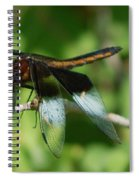 Dragon Fly Spiral Notebook