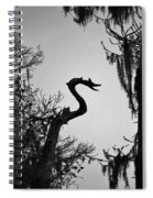 Dragon Shaped Tree Spiral Notebook