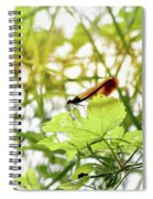 Dragonfly 02 Spiral Notebook