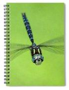 Dragonfly #1 Spiral Notebook