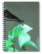 Dragonfly 1 Spiral Notebook