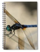Dragonfly Abstract Spiral Notebook