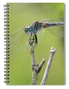 Dragonfly Against Green Backdrop Spiral Notebook