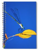 Dragonfly And Leaf Spiral Notebook