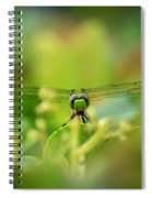 Dragonfly Dream In Green Spiral Notebook