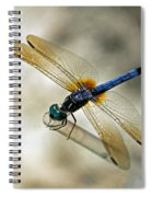 Dragonfly Dreams Spiral Notebook