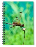 Dragonfly Hanging On Spiral Notebook