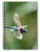 Dragonfly In Flight Spiral Notebook