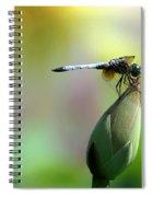 Dragonfly In Wonderland Spiral Notebook