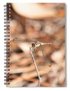 Dragonfly Karaoke Spiral Notebook