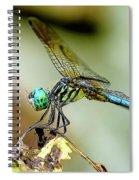 Dragonfly Landing Spiral Notebook