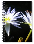 Dragonfly Lily Spiral Notebook
