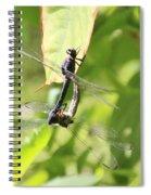 Dragonfly Love Spiral Notebook
