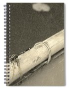 Dragonfly On Bamboo Oar Spiral Notebook