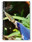 Dragonfly On Flag Spiral Notebook