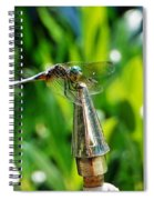 Dragonfly On Flag Post Spiral Notebook