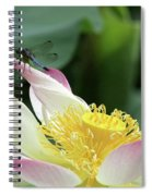 Dragonfly On Lotus Spiral Notebook