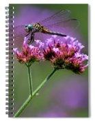 Dragonfly On Purple Verbena Spiral Notebook