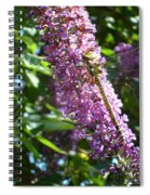 Dragonfly On The Butterfly Bush Spiral Notebook