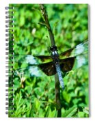 Dragonfly Resting On Stem Spiral Notebook
