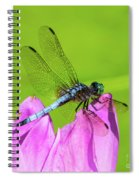 Dragonfly Resting Spiral Notebook