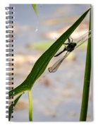 Dragonfly Resting Upside Down Spiral Notebook