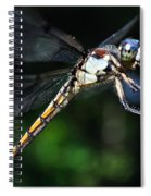 Dragonfly Revisited Spiral Notebook