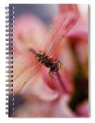 Dragonfly Serenity Spiral Notebook