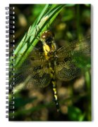 Dragonfly Venation Revealed Spiral Notebook