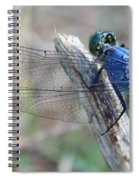 Dragonfly Wing Detail Spiral Notebook