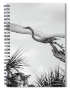 Dragonfly Wing Man Bw Spiral Notebook