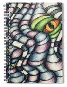 Dragon's Eye Spiral Notebook