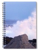 Drama Of The Rocky Shore Spiral Notebook