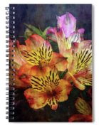 Dramatic 1536 Idp_2 Spiral Notebook
