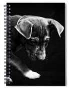 Dramatic Black And White Puppy Dog Spiral Notebook