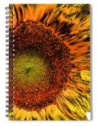 Dramatic Sunflower Spiral Notebook
